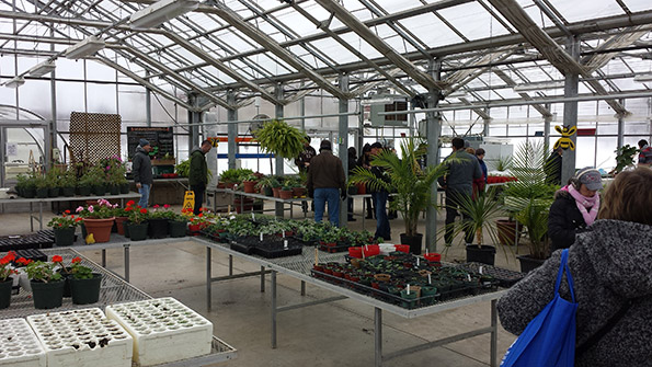 Onondaga Farms Greenhouse with various plants, vegetables and fruits Tim Horton Children's Foundation