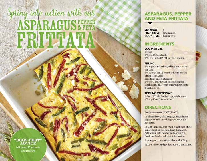Egg Farmers of Ontario Frittata Booklet graphic design